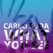 CARLO_wys002
